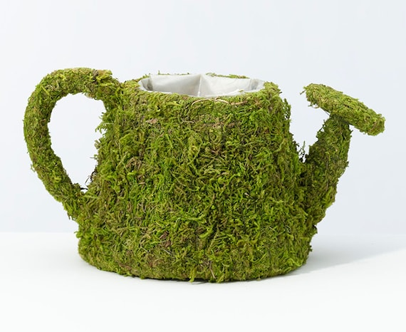 Moss Watering Can Planter Containers to Create Your Wedding, Bridal Shower or Party Centerpieces Just add Your Own Flowers or Plants