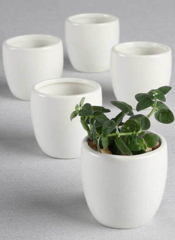 5 Mini Round Flower Pots, Flower Pot Favors, Party Favor Planter, Wedding Flower Pots, Flower Pots for Succulents, Party Favor Flower Pots,