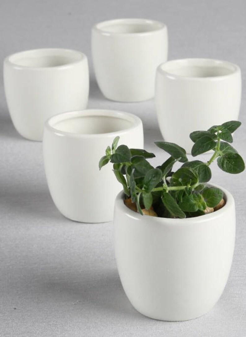 Etsy & 5 Mini Round Flower Pots Flower Pot Favors Party Favor Planter Wedding Flower Pots Flower Pots for Succulents Party Favor Flower Pots