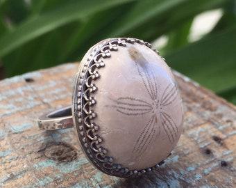 Sand dollar ring / fossilized sand dollar / ocean jewelry