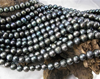 Half Drilled Loose Pearls,Genuine Freshwater Pearl Beads,High Luster Cultured Black Pearl Beads PB080 5-6mm Natural Black Round Pearls