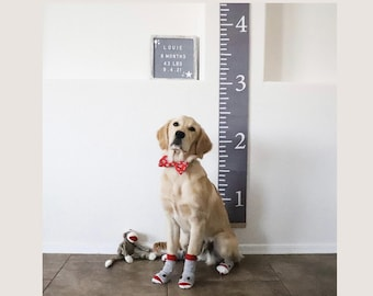 3' Puppy Growth Chart - Personalized Fabric Growth Chart - Growth Ruler - Height chart for Dogs - Pet Gift