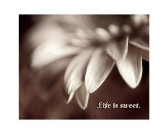 Life is Sweet, Inspirational Quote, Flower Photo, Typography, Anniversary Gift, Friendship, Cottage Decor