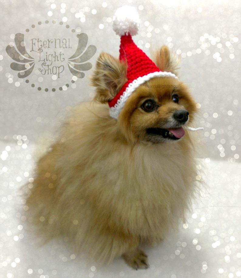 XS-XL Santa Pet Hat