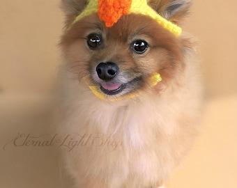 Pet Baby Chick Beanie (XS-XL)