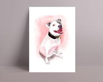 Watercolour Pet Portrait, A5, A4, A3