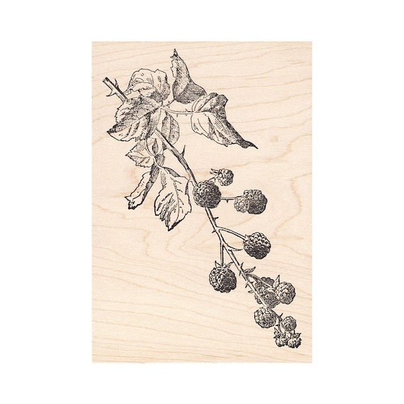 Landscape Stamping Floral Branch 1334LBeeswax Rubber Stamps Unmounted Mounted Stamp Scenic Cling