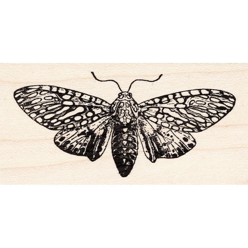 Leopard Moth 1708G Beeswax Rubber Stamps Unmounted Nature Cling Animals Stamping Mounted Stamp Scenic