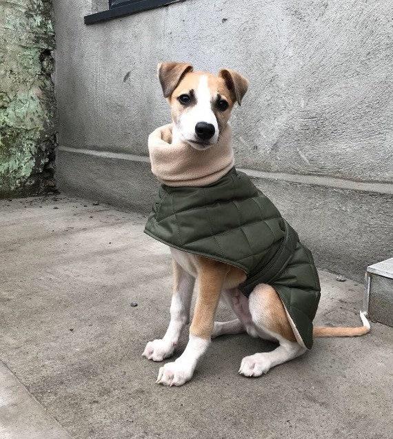 Waterproof greyhound coat readymade