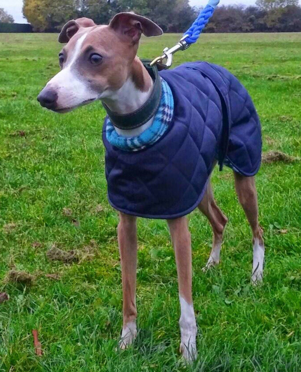 WHIPPET COAT readymade...