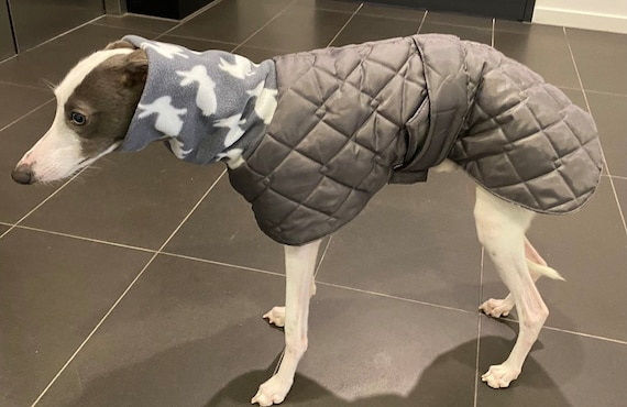 Greyhound and whippet waterproof winter quilted coats with a long fleece neck in a limited edition colour combination (GR)