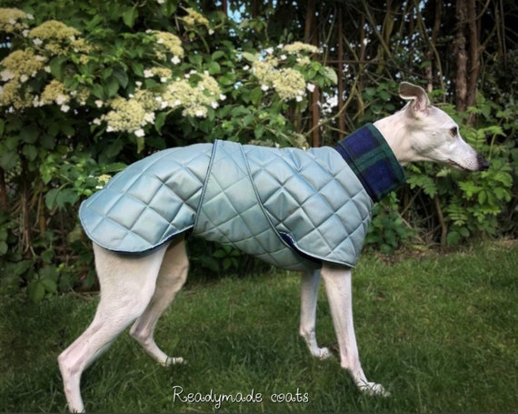 Whippet and greyhound winter waterproof fleece lined coats with underbelly protection readymade
