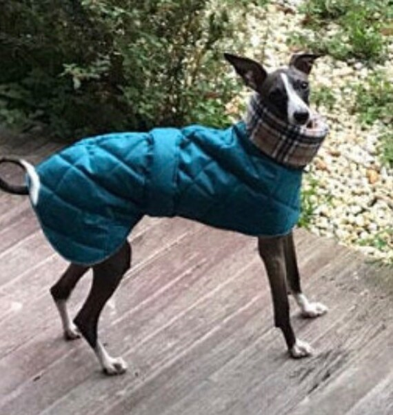 Waterproof winter whippet and greyhound coats