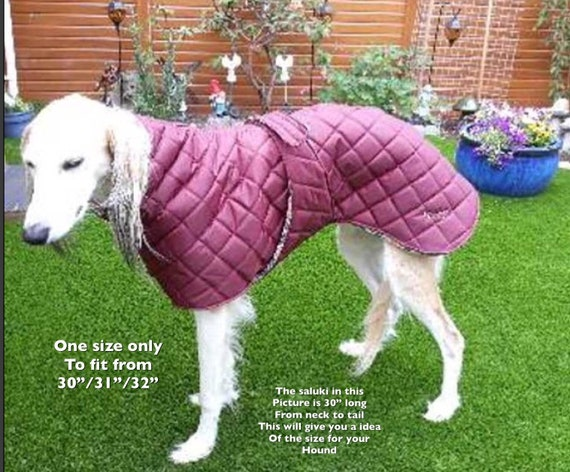 Greyhound waterproof fleece lined winter coats with underbelly protection