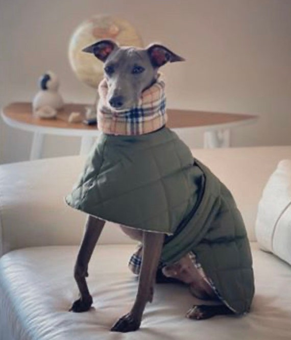 Whippet waterproof winter quilted coats with a long fleece neck.