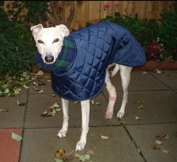 "Waterproof whippet coat in black 24"" readymade"