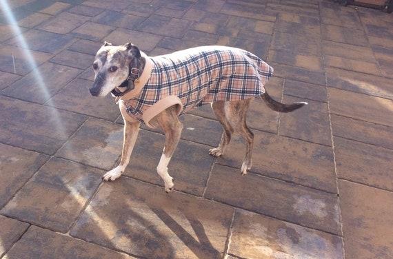 Greyhound fleece jumpers