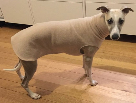 Greyhound and whippet fleece jumpers / Sleeveless Sweater