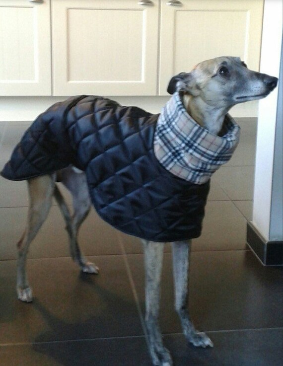 Greyhound fleece lined winter coats in black (seconds)