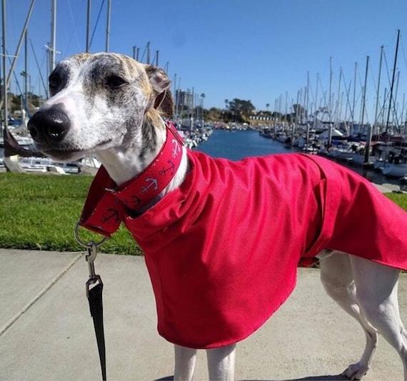 Greyhound / whippet /sighthound and Italian greyhound fleece lined raincoats. ( ziggy fleece )