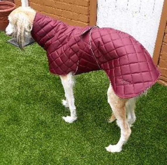 Greyhound / Whippet /waterproof Fleece lined Coat with underbelly protection readymade