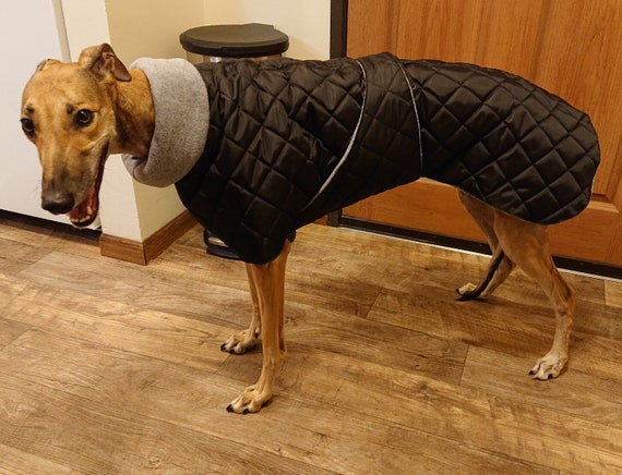 Greyhound winter waterproof fleece lined coats with underbelly protection
