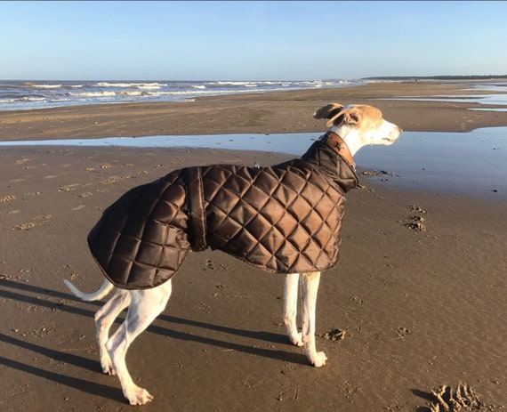 Greyhound waterproof winter quilted coats fleece lined with a short neck