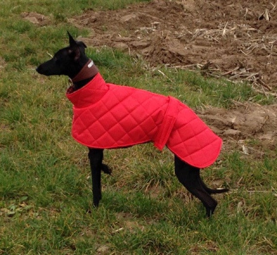 whippet waterproof fleece lined quilted coats with a short neck