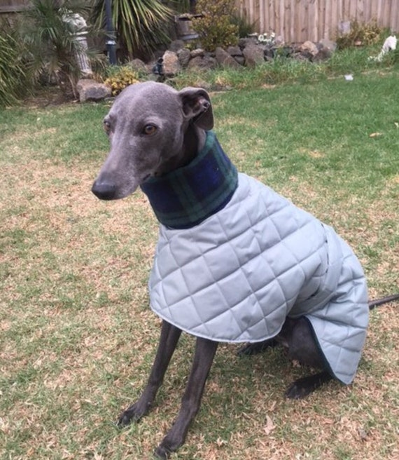 Waterproof fleece lined whippet and greyhound coats in a limited edition colour