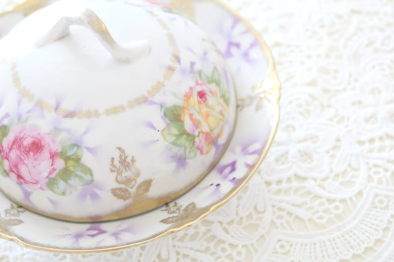 ANTIQUE CHEESE DOME with Under-Plate Porcelain by image 0