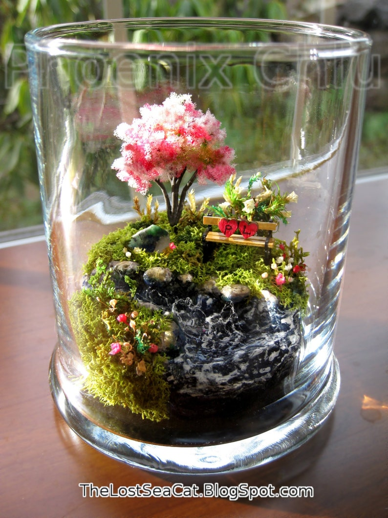 Water Terrarium House Plants Table Decor Initial Heart Fern Etsy
