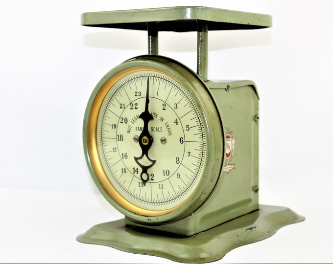 Vintage Family Scale / Pelouze Family Scale / Kitchen Scale /