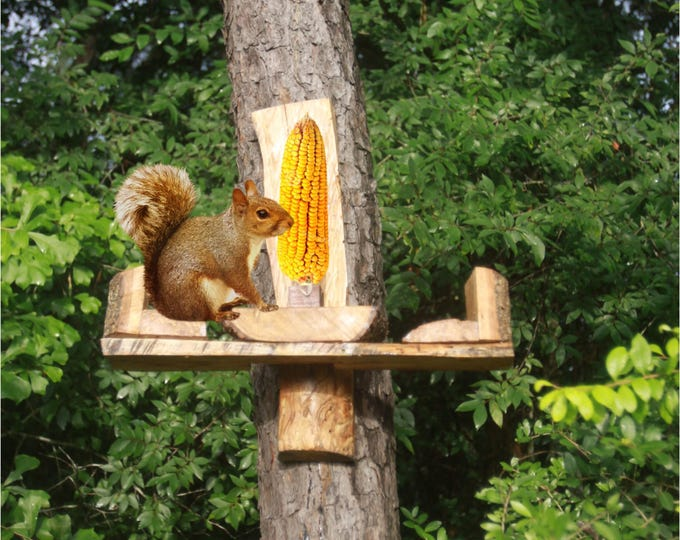 Squirrel  feeder all Hard wood made sealed with UV protected NON toxic finish