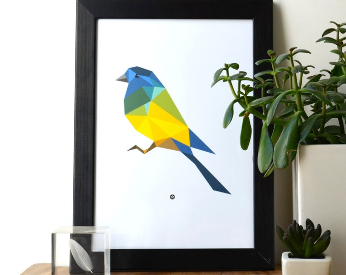 Poster Tropical Bird Green Blue Yellow