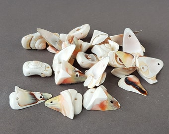 choose between two-hole drilled or not drilled Stunning vintage cowrie shell beads