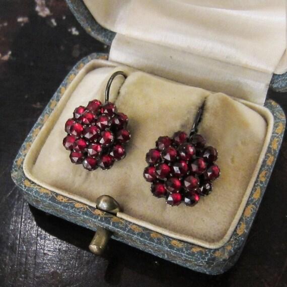 Antique Earrings, Victorian Bohemian Garnet Cluste