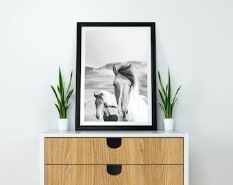 Wall Art // INSTANT DOWNLOAD // Printable Art // Horse // Art Print // Wall Decor // Digital