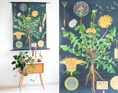 Botanical Poster, Dandelion Print, Pull Down Chart, Botanical Chart School Poster, Nursery Poster, Botanical Illustration, Educational Art