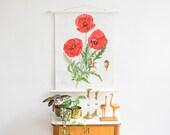 Botanical poster, Poppy Print, School Chart, Pull Down Chart, Roll Down Poster, Educational Print, Floral Poster, Botanical Print, Botanical
