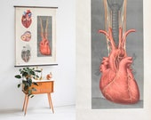 Heart Poster, Heart Print, Anatomical Print, School Pull Down Chart, Educational Print, Gift for Her, Poster Vintage, School Poster,Mom Gift