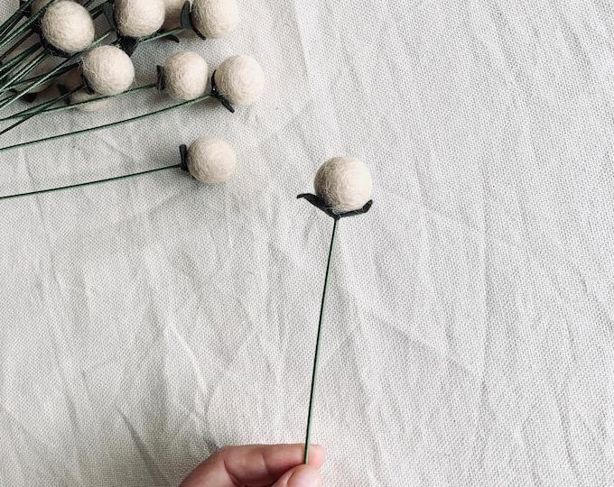 Linen Seed Pod