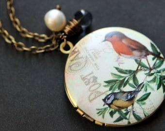 Robin and Blue Bird Necklace. Bird Locket Necklace. Bronze Necklace with Dark Blue Teardrop and Pearl. Bronze Locket. Handmade Jewelry.