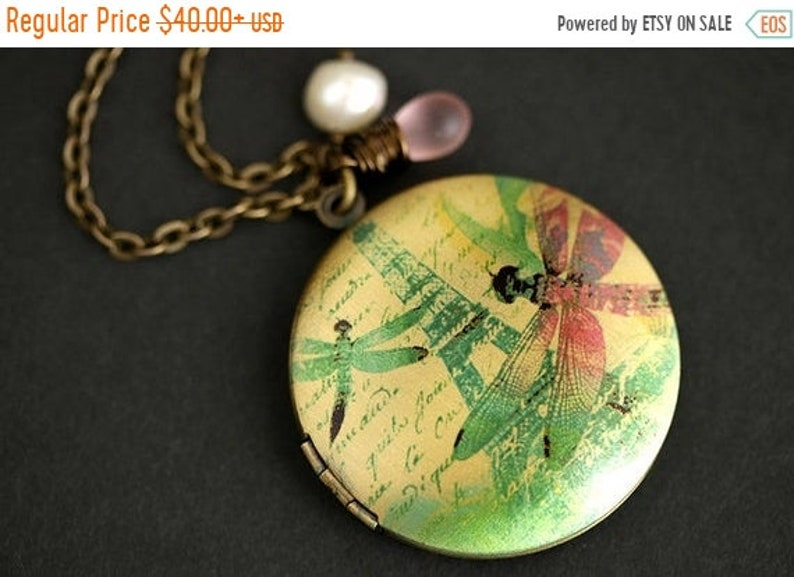 HALLOWEEN SALE Dragonflies in Paris Necklace. Dragonfly Locket image 0