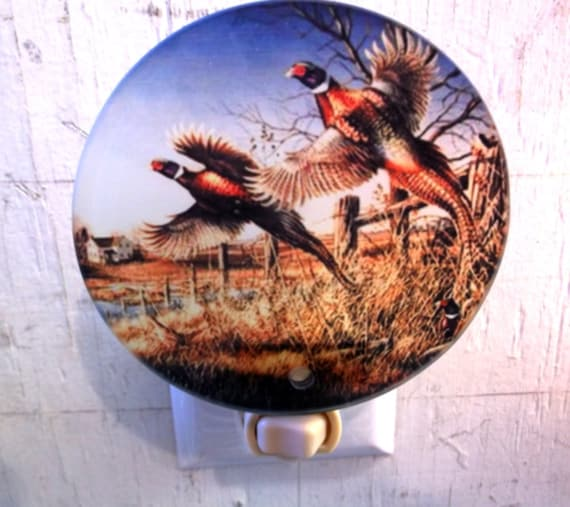 pheasant night light, wildlife night light, bird night light, hunters night light, decorative light, pretty light, bathroom night light