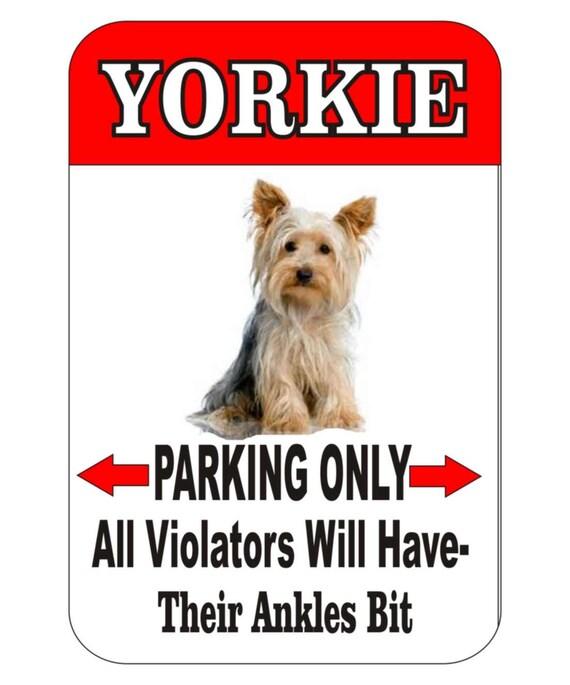 yorkshire terrier sign, yorkie sign, indoor/outdoor sign,funny metal sign, pet sign, custom sign, yard sign, garage sign, driveway sign