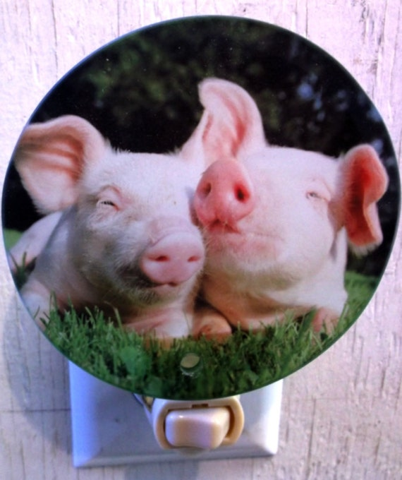 pig night light, animal night light, funny night light, farm night light, decorative night light, bathroom light, kids light, kitchen light
