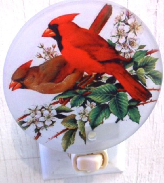 cardinal night light, bird night light, decorative night light, kitchen night light, bathroom night light, pretty night light,