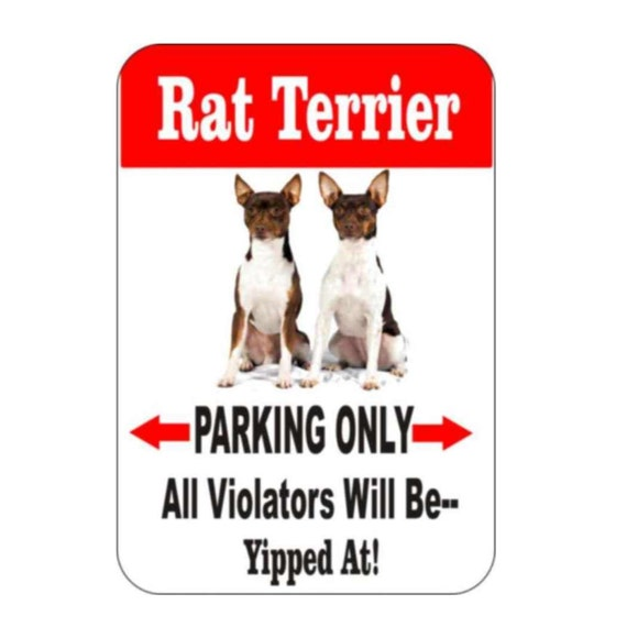 rat terrier sign, rat terrier , pet sign, funny sign, aluminum sign, metal sign, yard sign,  driveway sign, house sign, warning sign