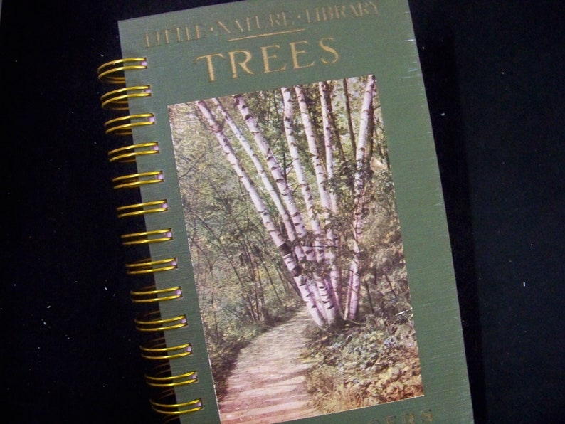 TREES blank book journal diary planner notebook altered book image 0