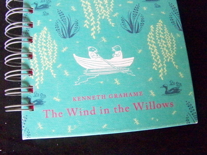 Wind in the Willows book journal diary planner altered book image 0